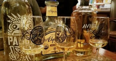 Set of three Tequila bottles with Tequila in glasses in front