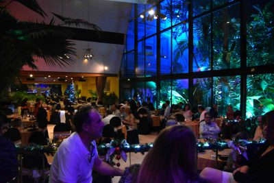 Bar with soft lighting and many people
